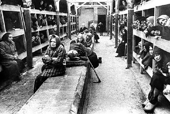womens-concentration-camp-bunks